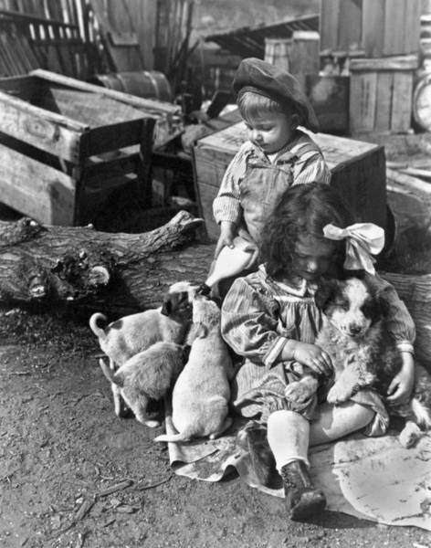 Milk Farm Photograph - Children On Farm With Puppies by Underwood Archives