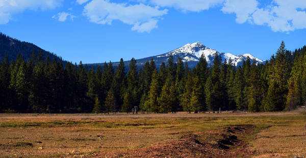 Photograph - Childs Meadow Brokeoff Mountain by Frank Wilson