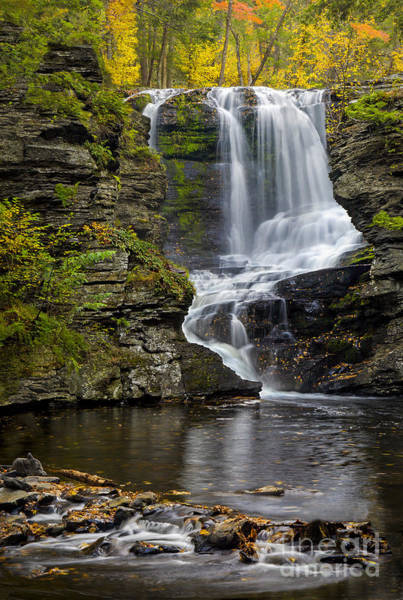Photograph - Childs Park Waterfall by Susan Candelario