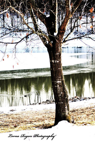 Photograph - Chill Of Winter With Signature by Lorna R Mills DBA  Lorna Rogers Photography