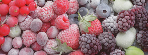 Wall Art - Photograph - Chilled Berries, 2001 by Norman Hollands