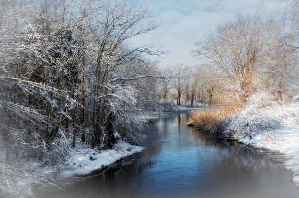 Photograph - Chilly Brook by Robin-Lee Vieira