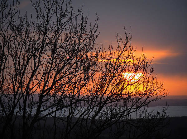 Photograph - Chilly Irish Sunrise As Winter Fades by James Truett
