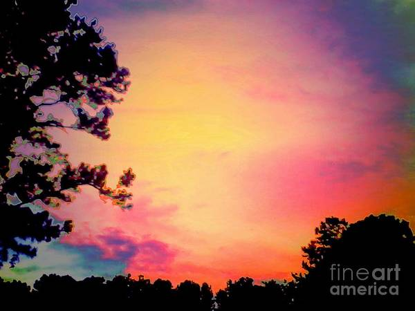 Wall Art - Photograph - Chimerical Dream by Heather Taylor