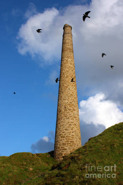 Just Birds Photograph - Chimney At Botallack Cornwall by Terri Waters