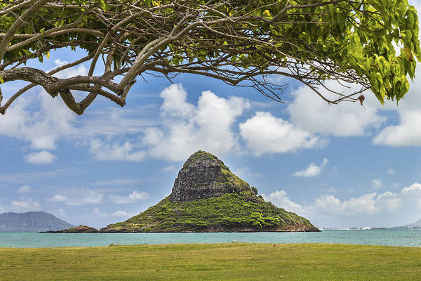 Mokolii Photograph - Chinaman's Hat 1 by Leigh Anne Meeks