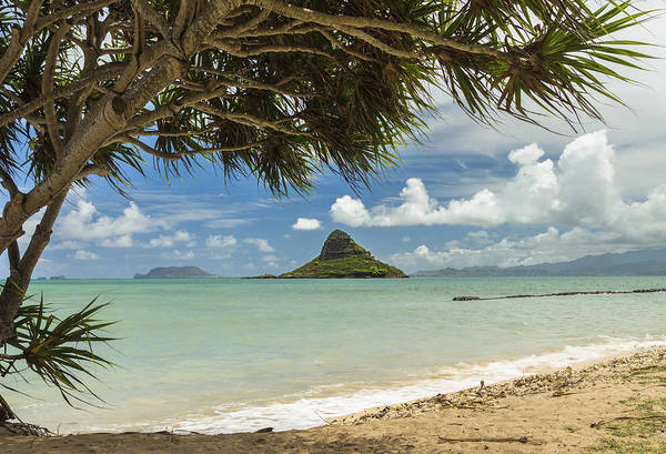 Mokolii Photograph - Chinaman's Hat 3 by Leigh Anne Meeks