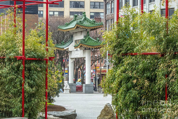 Photograph - Chinatown Gate With Bamboo by Susan Cole Kelly