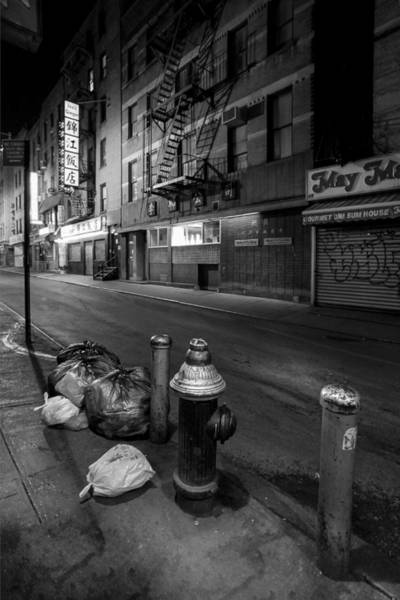Photograph - Chinatown New York City - Joe's Ginger On Pell Street by Gary Heller