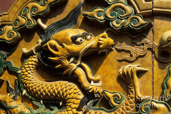 Photograph - Chinese Dragon Portrait by James Brunker