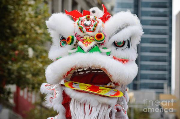 Chinese Dragon Rising Art Print