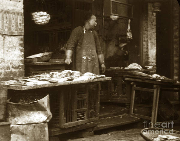 Photograph - Chinese Fish Peddler San Francisco Chinatown Circa 1900 by California Views Archives Mr Pat Hathaway Archives
