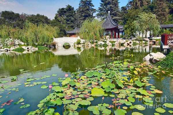 Chinese Pavilion Photograph - Chinese Garden - Huntington Library. by Jamie Pham