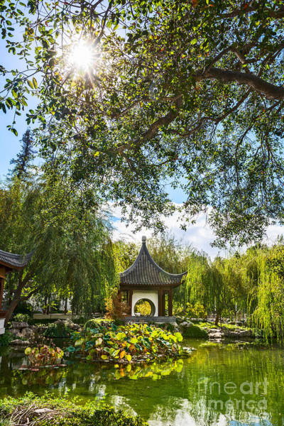 Chinese Pavilion Photograph - Chinese Garden Sun by Jamie Pham