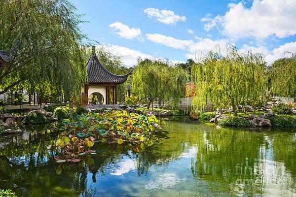 Chinese Pavilion Photograph - Chinese Garden Vista by Jamie Pham