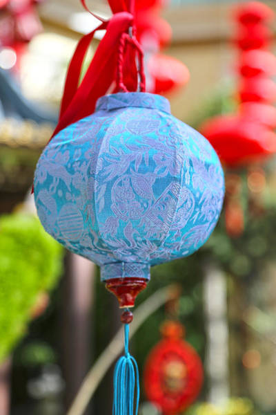 Photograph - Chinese Lantern Two - Bellagio by Michael Hope