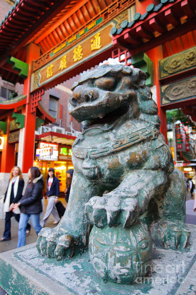 Photograph - Chinese Stone Lion Protects The Chinatown Gate by David Hill