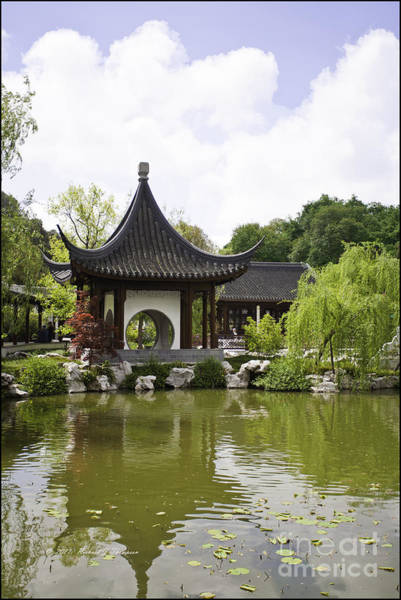 Photograph - Chinese Water Garden by Richard J Thompson