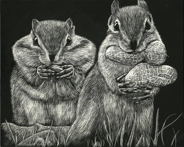 Drawing - Chip 'n' Dale by William Underwood