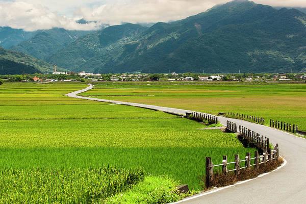 Green Jay Photograph - Chishang Rice Field Taiwan by Jay's Photo