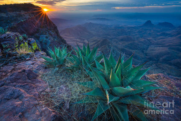 Nps Photograph - Chisos Dawn by Inge Johnsson