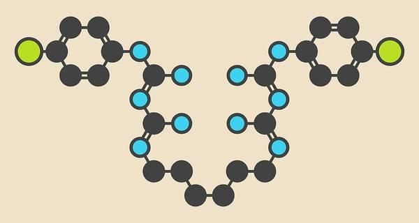 Preservative Wall Art - Photograph - Chlorhexidine Antiseptic Molecule by Molekuul