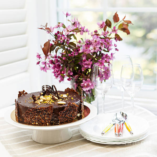 Wall Art - Photograph - Chocolate Cake With Flowers by Elena Elisseeva