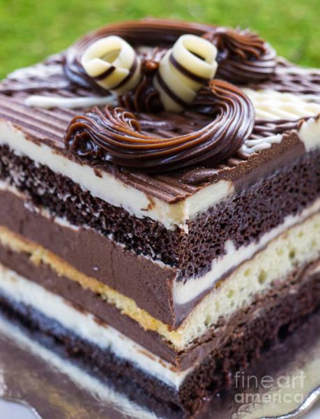 Photograph - Chocolate Temptation by Edward Fielding