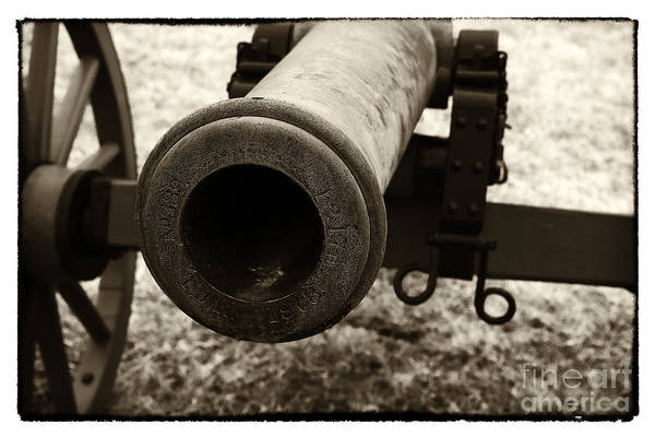 Wall Art - Photograph - Choosing Targets by John Rizzuto