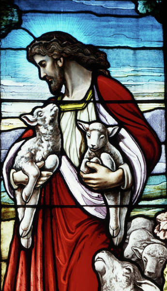 New Testament Photograph - Christ The Good Shepherd With His Flock by Vintage Images