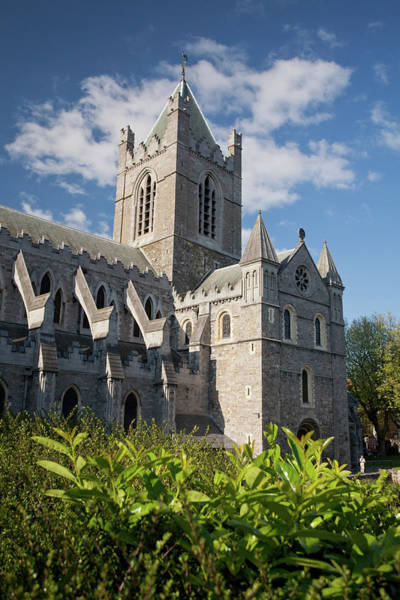 City Of David Photograph - Christchurch Cathedral by David Soanes Photography