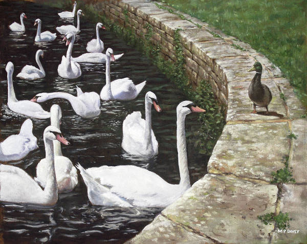 Painting - christchurch harbour swans with Mallard Duck conversation by Martin Davey