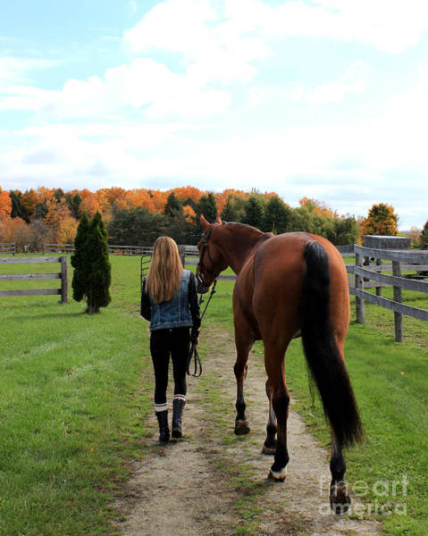 Photograph - Christine Stewie 13 by Life With Horses