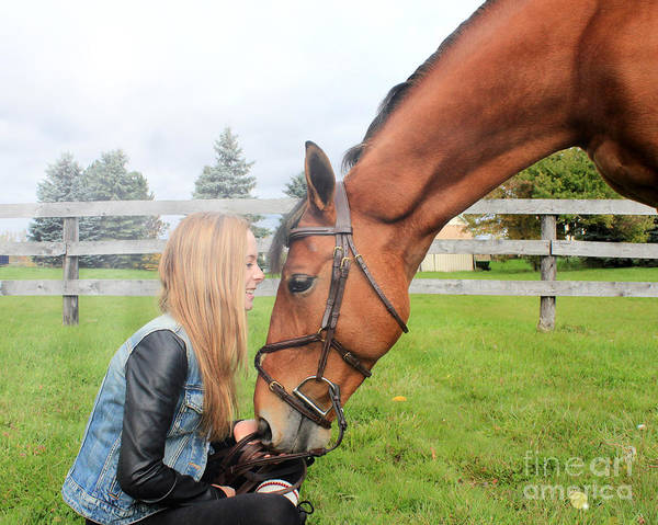 Photograph - Christine Stewie 24 by Life With Horses