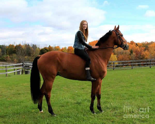 Photograph - Christine Stewie 26 by Life With Horses