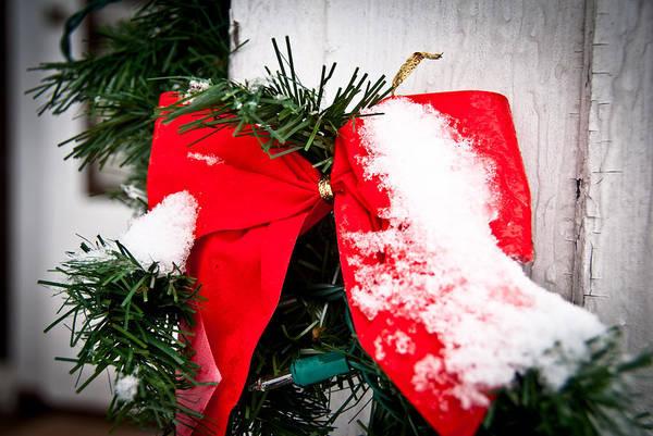 Wall Art - Photograph - Christmas Bow  by Nickaleen Neff