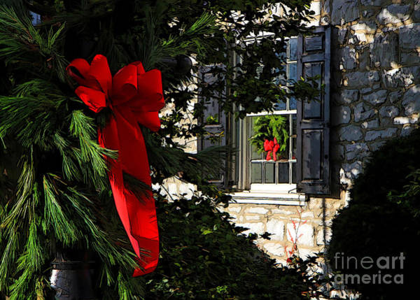 Photograph - Christmas Bows by Geoff Crego