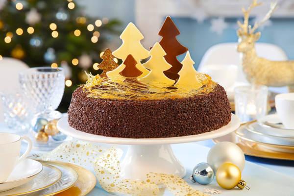 Photograph - Christmas Cake by Doc Braham