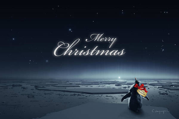 Christmas Gift Digital Art - Christmas Card - Penguin Black by Cassiopeia Art