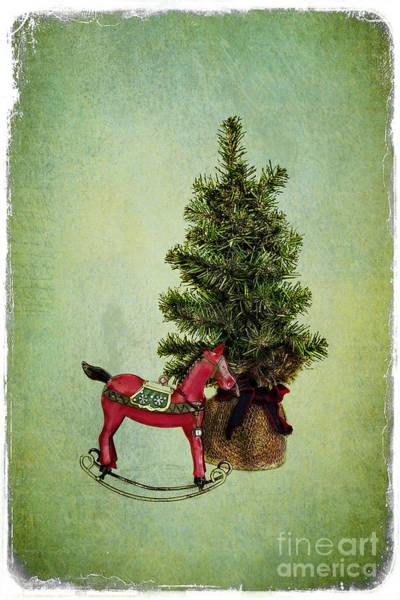 Photograph - Christmas Cheer by Elena Nosyreva