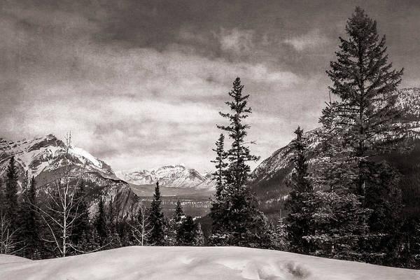 Digital Art - Christmas Day In Banff Bw by Eduardo Tavares