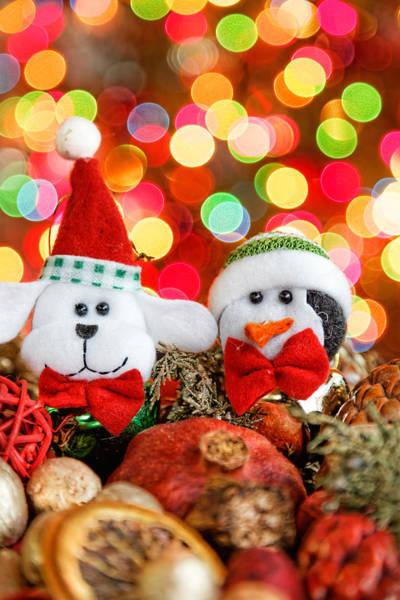 Photograph - Christmas Dog And Penguin by Peter Lakomy