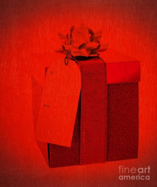 Photograph - Christmas Gift by Edward Fielding
