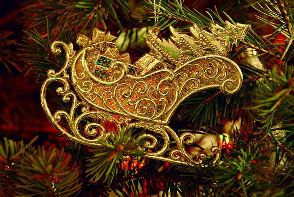 Photograph - Christmas Gold Ornament by Angie Tirado