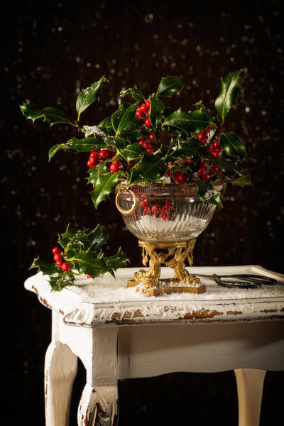 Green Berry Photograph - Christmas Holly by Amanda Elwell