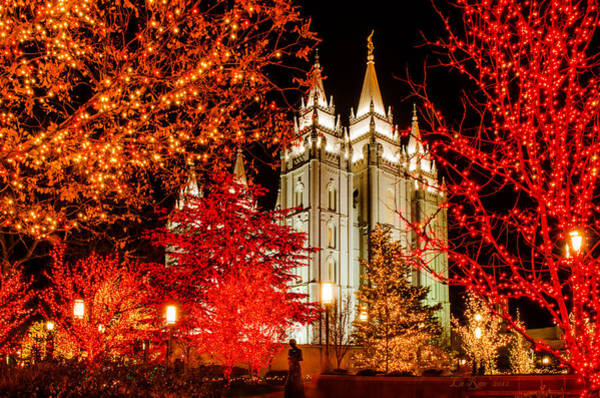 Mormon Photograph - Christmas In Red by La Rae  Roberts