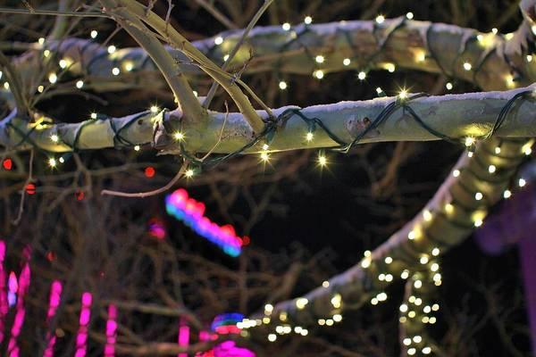 Fantasy Wall Art - Photograph - Christmas Lights by Tony Castle