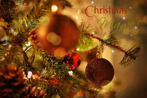 Photograph - Christmas Magic by Paulette B Wright