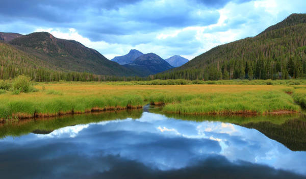 Christmas Meadows In The Uinta Mountains. Art Print