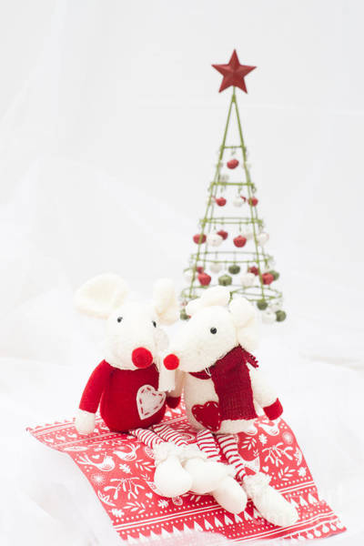 Wall Art - Photograph - Christmas Mice by Anne Gilbert